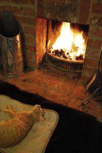 A real wood burning fireplace. rightbeforemyeyes | Feline ...