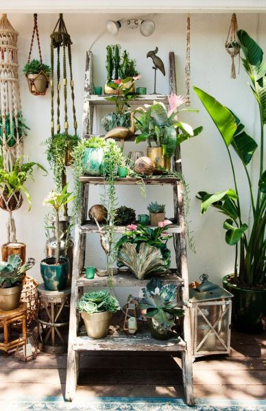 vintage bedroom ideas with plants 25+ best Plant Rooms ideas on Pinterest | Plants indoor, Interior plants and Indoor plant decor