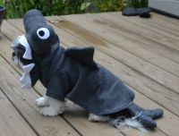 1000+ images about Great Dog Costumes on Pinterest | Yoda ...