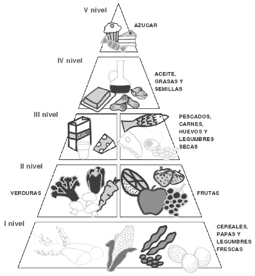 93 best images about What is the Food Pyramid Diet? on