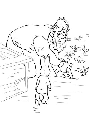 1000+ images about Peter Rabbit & Friends on Pinterest