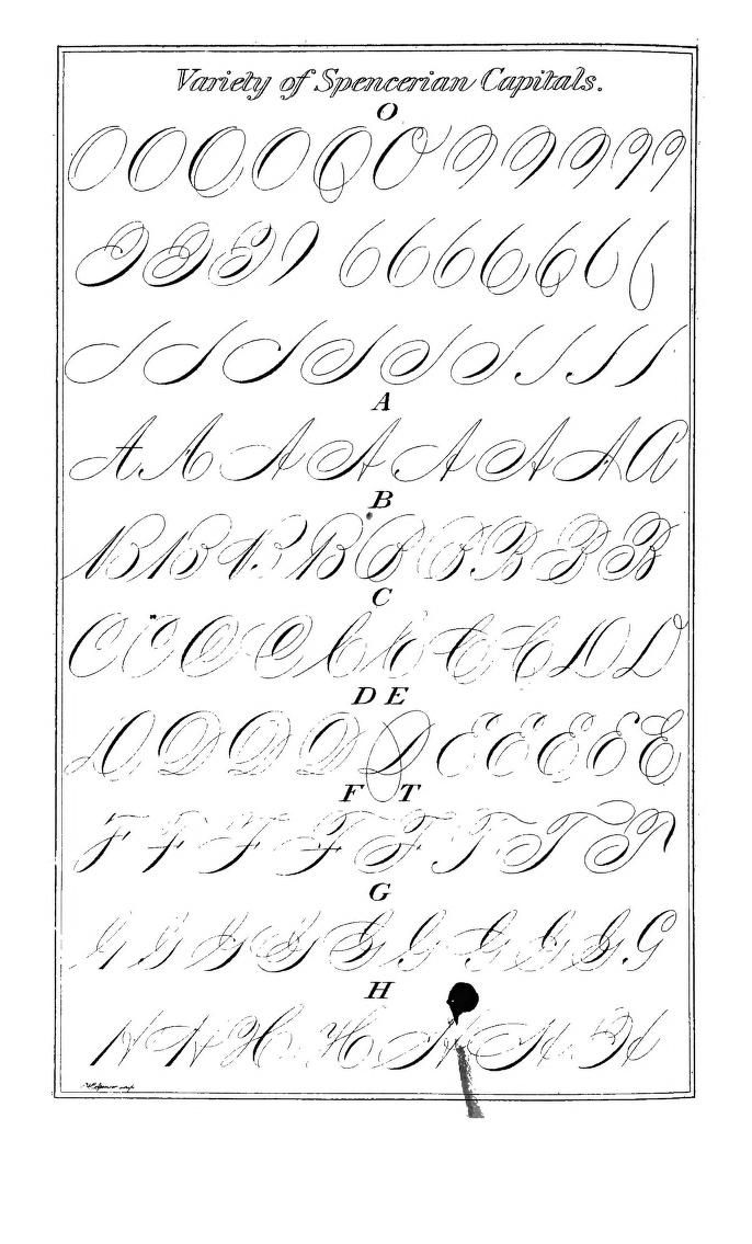 1000+ images about Calligraphy and Hand Lettering on