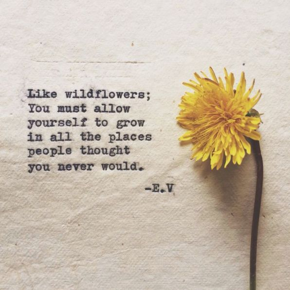 quote like wildflowers growth