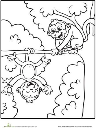 Coloring pages, Monkey and Coloring on Pinterest
