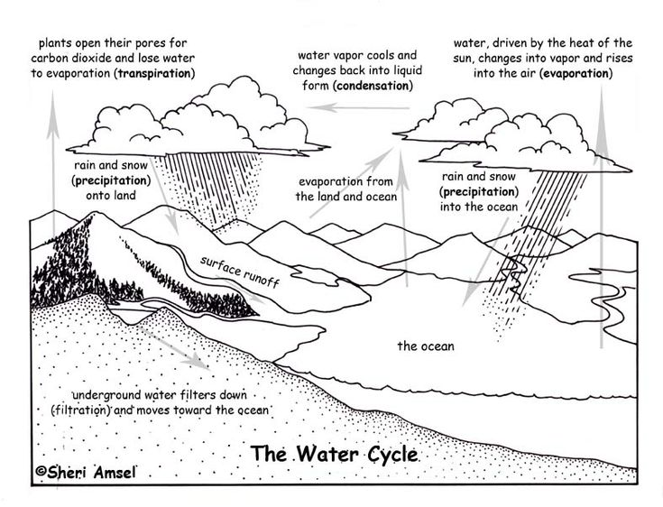 Water cycle, Science and Water on Pinterest