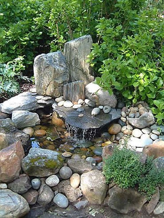 25 Best Ideas About Water Gardens On Pinterest Water Garden