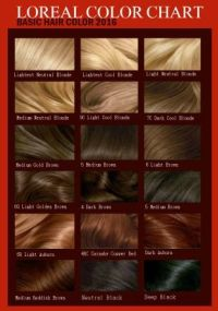 Loreal Feria Professional Hair Color Directions | l oreal ...