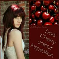 Best 25+ Cherry coke hair ideas on Pinterest | Dark cherry ...