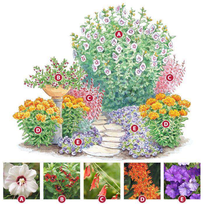 25 Best Ideas About Full Sun Garden On Pinterest Full Sun