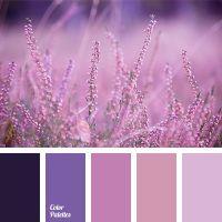 1000+ ideas about Lavender Color Scheme on Pinterest ...