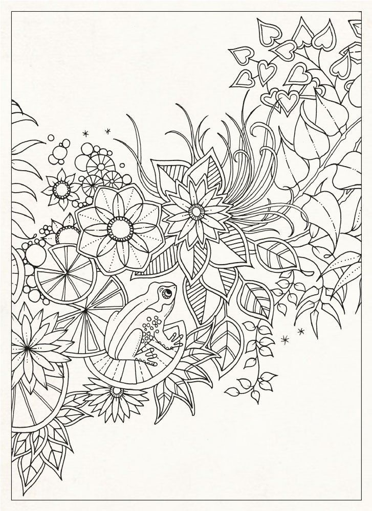 Secret gardens, Coloring for adults and Coloring on Pinterest