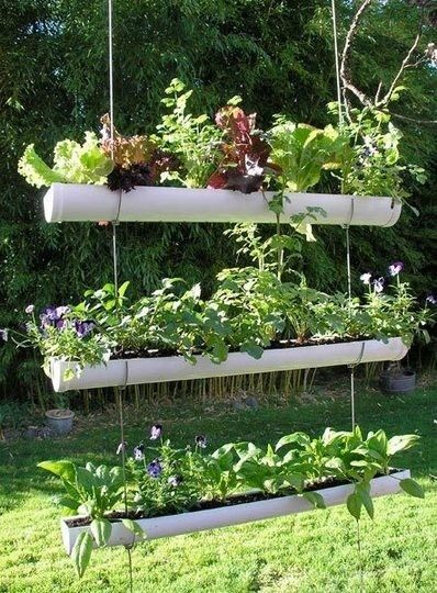 25 Best Ideas About Urban Farming On Pinterest Raising Chickens