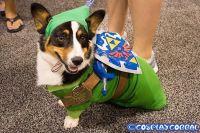 55 best images about zelda costume on Pinterest   Legends ...