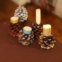 17 Best images about pine cone projects on Pinterest ...