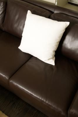 How To Get Pet Odor Out Of Leather Furniture Pet Odors Leather