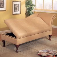 1000+ ideas about Chaise Lounge Indoor on Pinterest ...