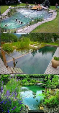 25+ best ideas about Natural backyard pools on Pinterest ...