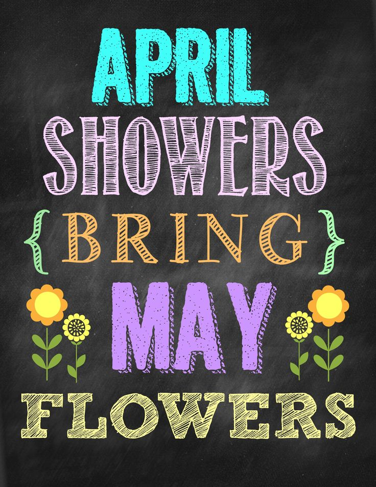 Second Chance to Dream April Showers Bring May Flowers