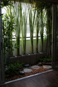 25+ best ideas about Small balcony garden on Pinterest