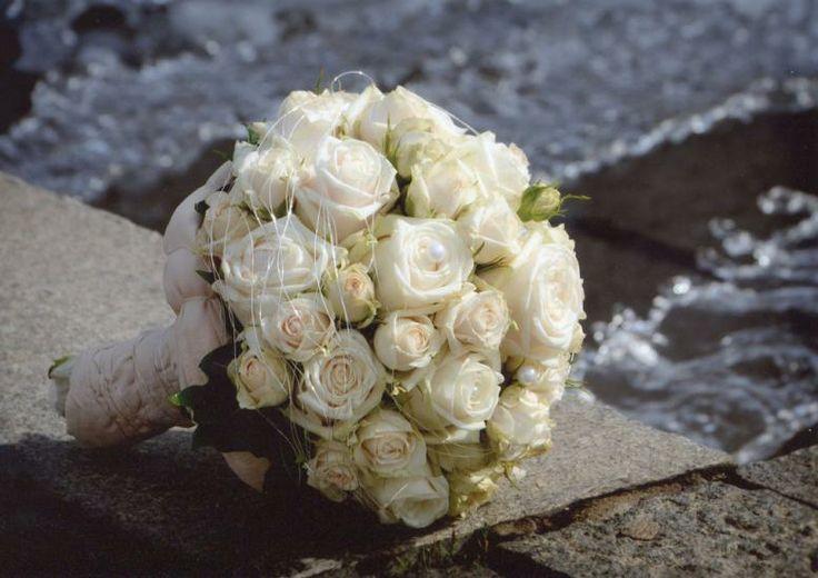 126 best images about floristik in deutschland on Pinterest  Darmstadt Hamburg and Events