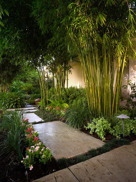 asian inspired garden design