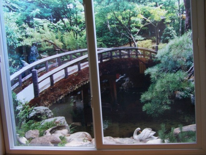 Ideas for basement window well scenes home decor more