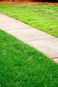 17 Best ideas about Lawn Decorations on Pinterest ...