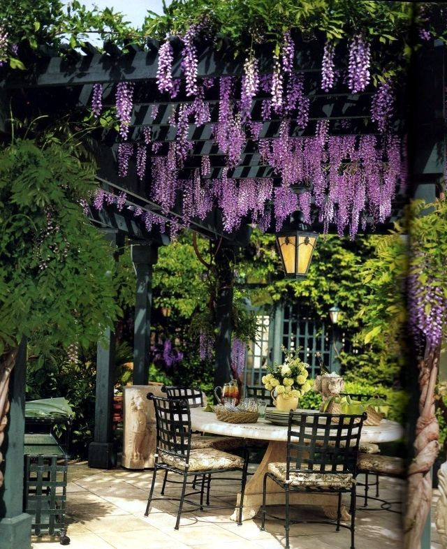 25 Best Ideas About Pergola Designs On Pinterest Pergola Garden