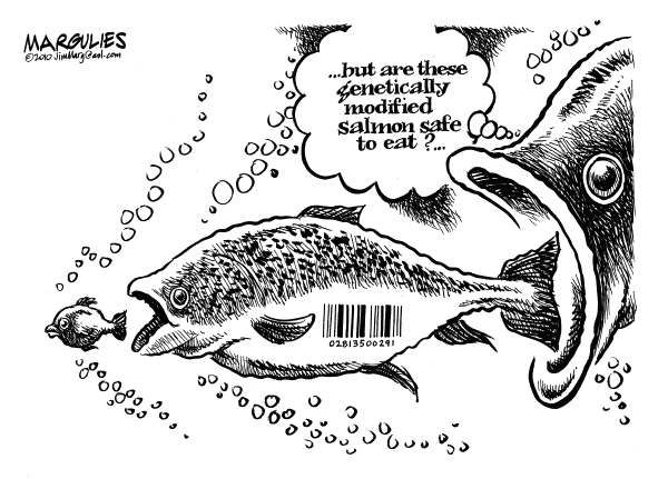43 best images about Best GMO Political Cartoons on