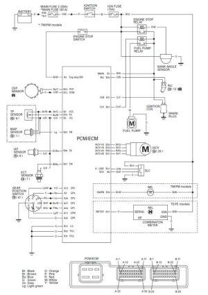 Honda Foreman Wiring Diagram http:wwwhondaforeman