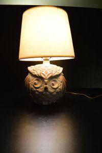 17 Best ideas about Owl Lamp on Pinterest | Owl mug, Owl ...