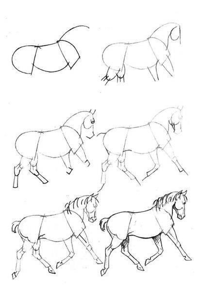 10 Best images about How to draw : HORSES on Pinterest
