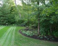 Best 25+ Wooded backyard landscape ideas on Pinterest