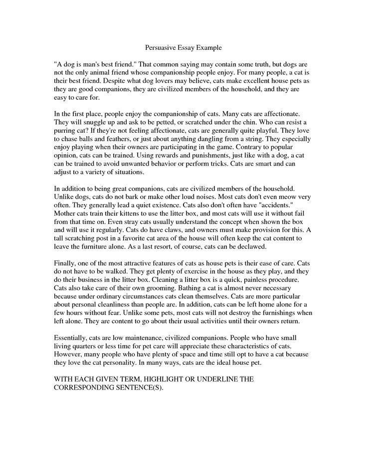 Essay About Leaders Leaders Essay Americanism Educational Leaders
