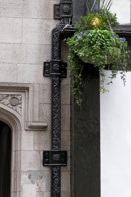 Liberty Downspout London by teresue via Flickr  Gutters and Gargoyles  Pinterest  Home