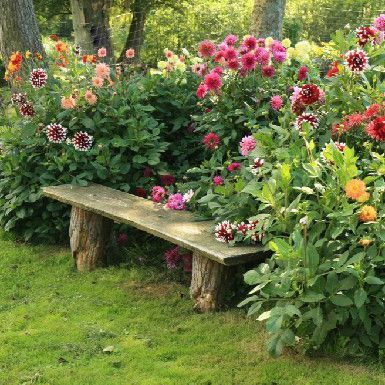 25 Best Ideas About Flower Garden Design On Pinterest Growing