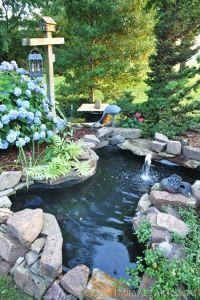 Best 20+ Fish ponds ideas on Pinterest   Pond kits, Koi ...