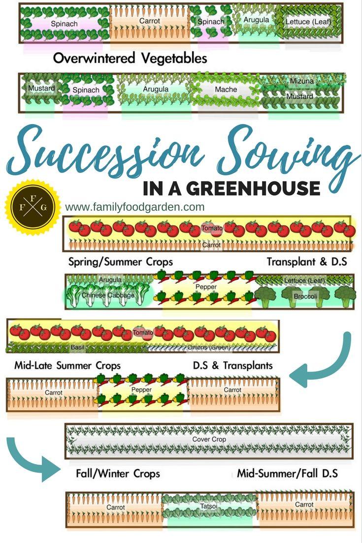 25 Best Ideas About Greenhouse Gardening On Pinterest Diy