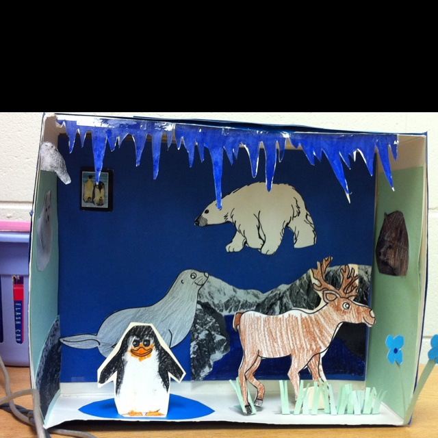 Arctic Tundra diorama biomes  Science Projects