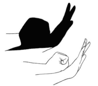 28 best hand shadow puppet's images on Pinterest