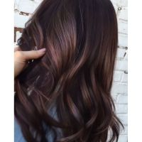 1000+ ideas about Deep Violet Hair on Pinterest | Violet ...