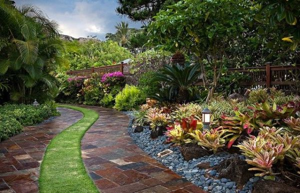 bromeliad landscaping - beautiful