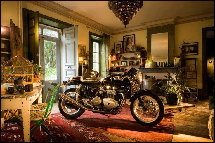 Thruxton in the living room   caf racer  Pinterest