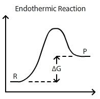 1000+ ideas about Exothermic Reaction on Pinterest