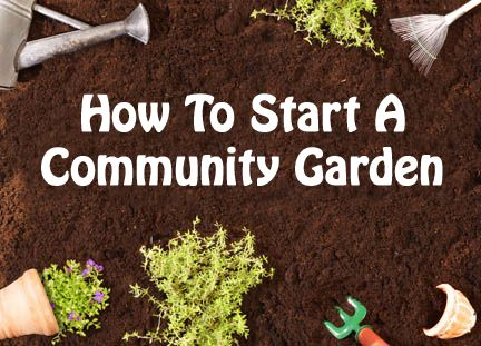 126 Best Images About Community Garden And Food Co Op On Pinterest