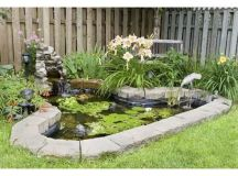 1000+ ideas about Fish Ponds on Pinterest | Pond ideas ...