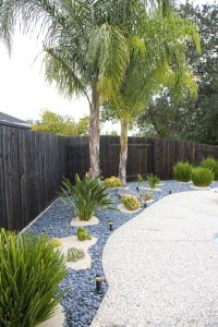 Top 25+ best Palm trees landscaping ideas on Pinterest