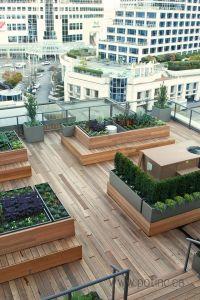 25+ best ideas about Rooftop Gardens on Pinterest | In ...