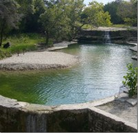 natural swimming pool | Spring Fed Natural Pond ...