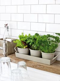 1000+ ideas about Kitchen Garden Window on Pinterest ...